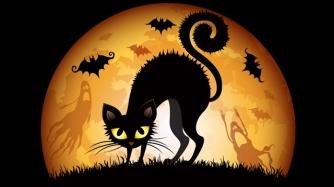 Halloween-Cat-63742048